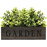 Wooden Planter Box Indoor Outdoor, Rustic Rectangular Wooden Box with Removable Liner, Country...