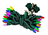 Borita Outdoor Christmas Lights String C3 Strawberry Mini Bulbs,17Ft 50 LEDs Multi Colored Indoor...