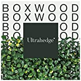 UltraHedge Small Boxwood| Decorative Wall Greenery Fence Covering | Indoor Outdoor 20 x 20 in. Dark...