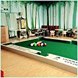 ibigbean Snookball Pool Table Set 6.6x3.6x0.2m