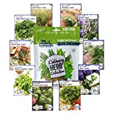 10 Variety Culinary Herb Collection and 96 Page Growing Guide - Non GMO Heirloom Basil, Thyme,...