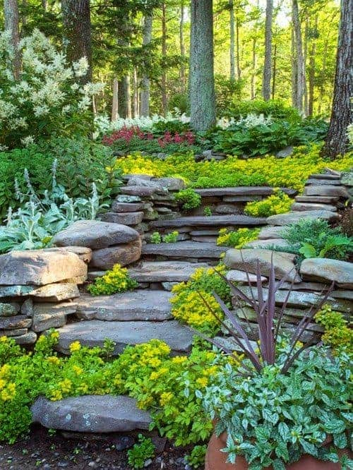 Forest Frolic - garden-decor