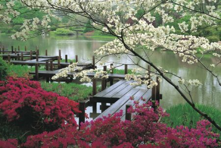 The Zen of a Japanese Garden Landscapes 3 - Landscape & Backyard Ideas - 1001 Gardens