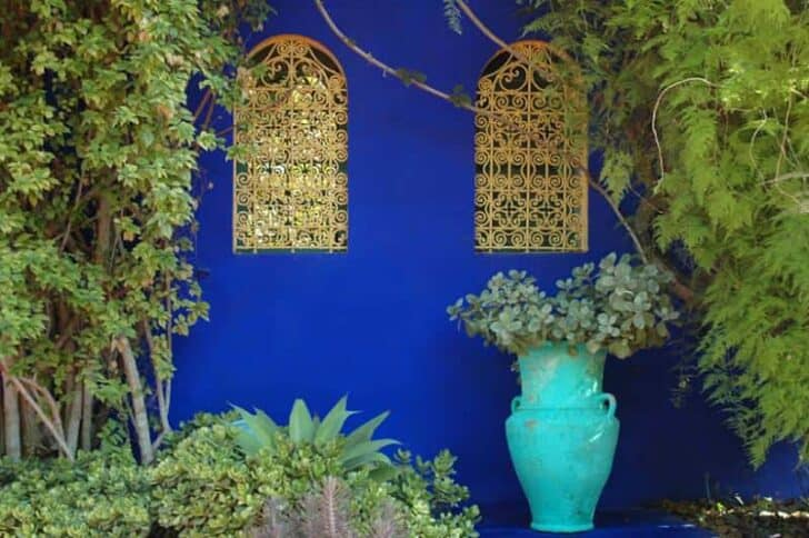 The Majorelle Garden in Marrakech Garden Decor