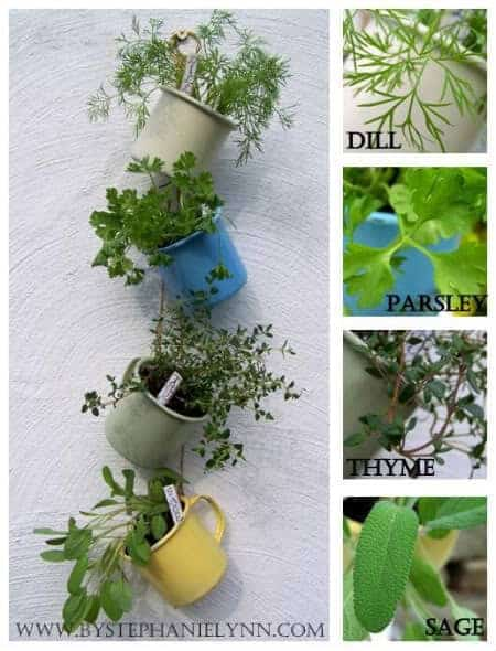 Hanging Coffee Cup Garden - flowers-plants-planters