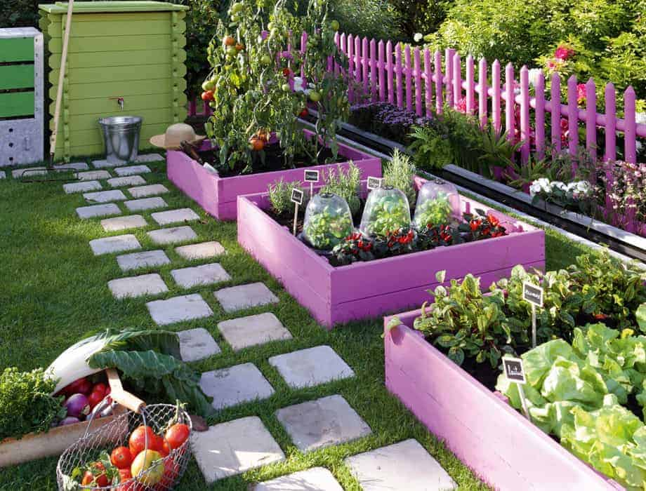 Girly Vegetable Garden - flowers-plants-planters