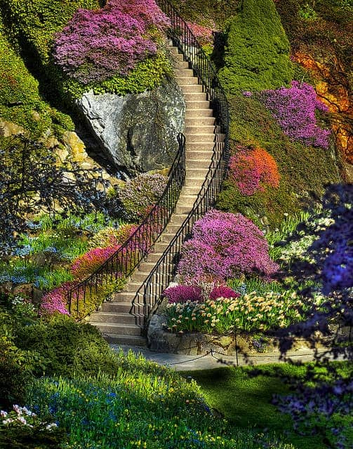 Stairway to Heaven ? Garden Decor