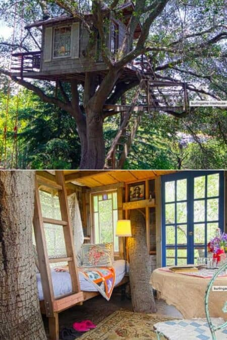 Burlingame Treehouse