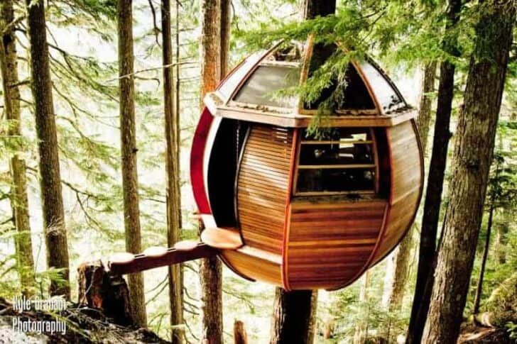 Secret Hemloft Treehouse in Canadian Woods - sheds-huts-treehouses