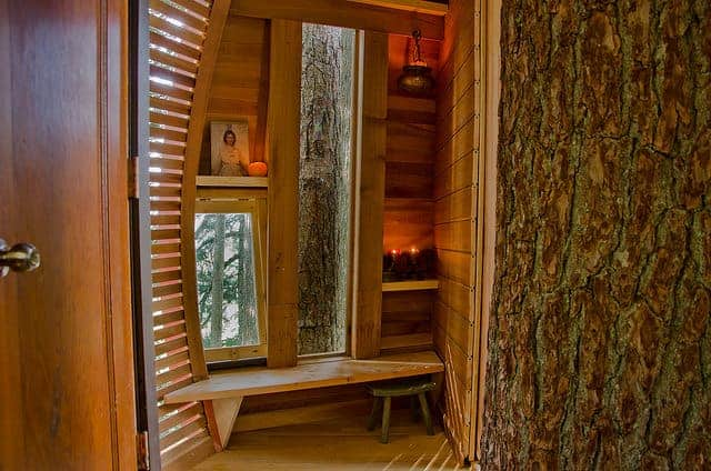 Secret Hemloft Treehouse in Canadian Woods Sheds, Huts & Tree Houses