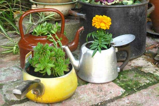 Upcycled Tea Kettle Planters - flowers-plants-planters