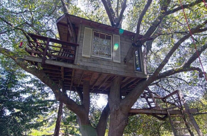 Burlingame Treehouse 1001 Gardens