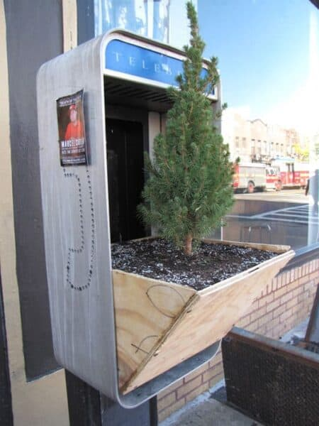 Repurposed Phone Box into Tree Planters 6 - Urban Gardens & Agriculture - 1001 Gardens
