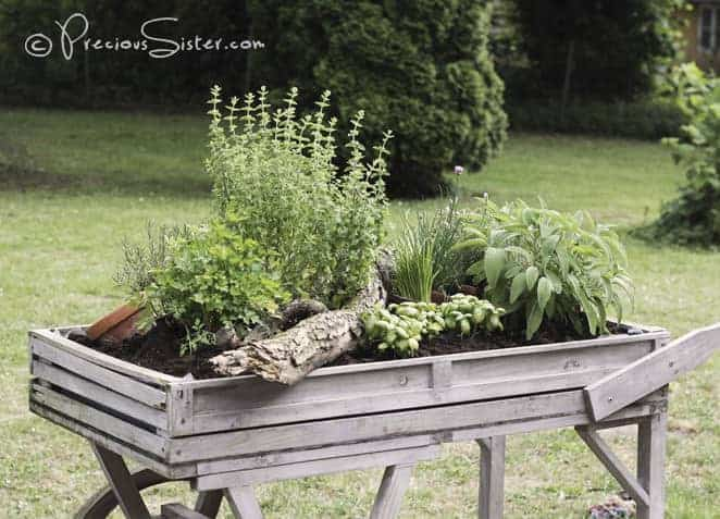 Herb Wagon Flowers, Plants & Planters
