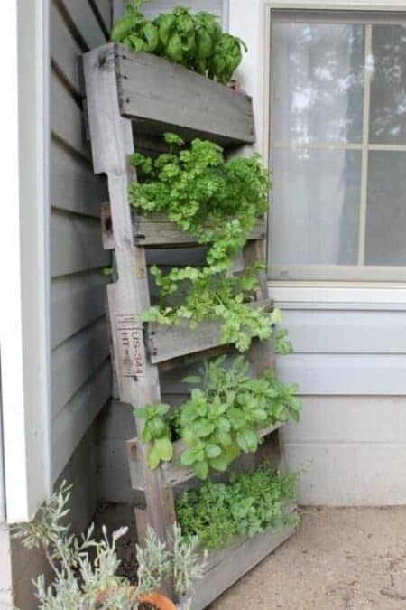 Upcycled Pallet as a Vertical Garden 25 - Pallets Projects & Furniture