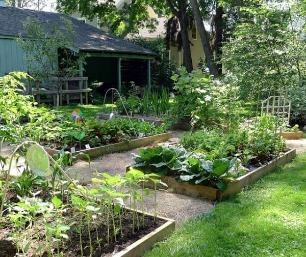 5 Reasons To Build A Raised Garden Bed - flowers-plants-planters