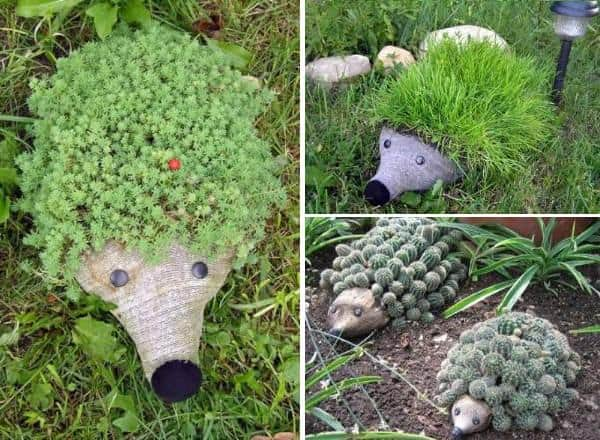 Hedgehog Pet Bottle Planters - flowers-plants-planters