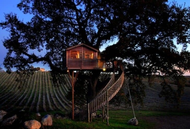 La Piantata : Treehouse on Lavander Fields Sheds, Huts & Tree Houses