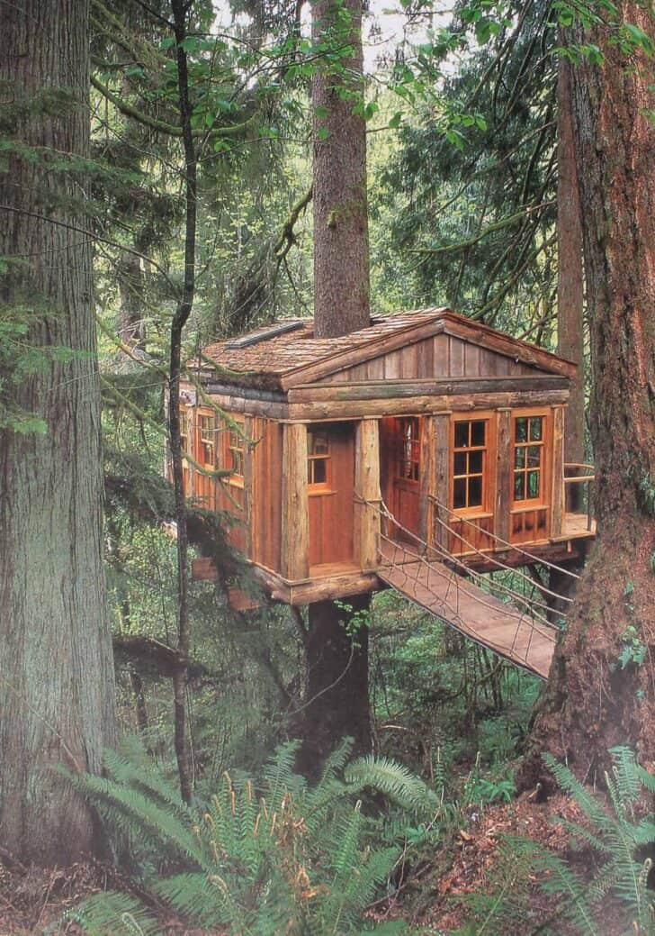 Old Treehouse 1 - Summer & Tree Houses - 1001 Gardens