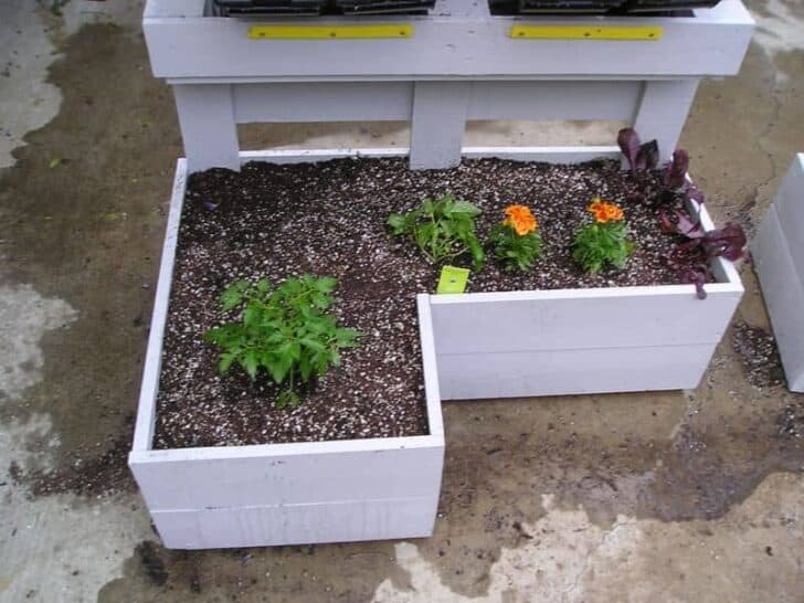 Pallet Herbs Planters - garden-pallet-projects-ideas, flowers-plants-planters