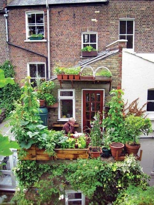 Balcony Garden in the Uk - guerrilla-gardening