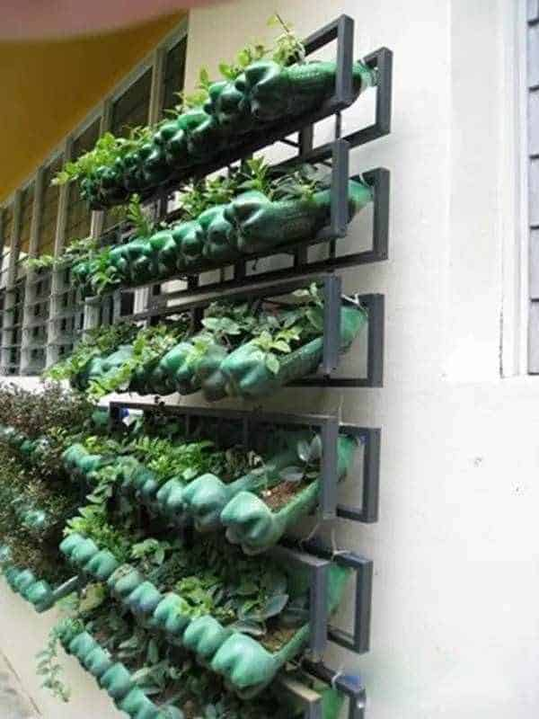 Vertical Garden From Soda Bottles 1001 Gardens