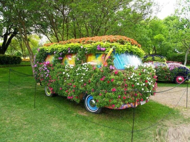 Van Garden - garden-decor