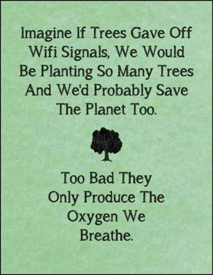 Imagine If Trees Gave Off Wifi Signals Guerrilla & Urban Gardening