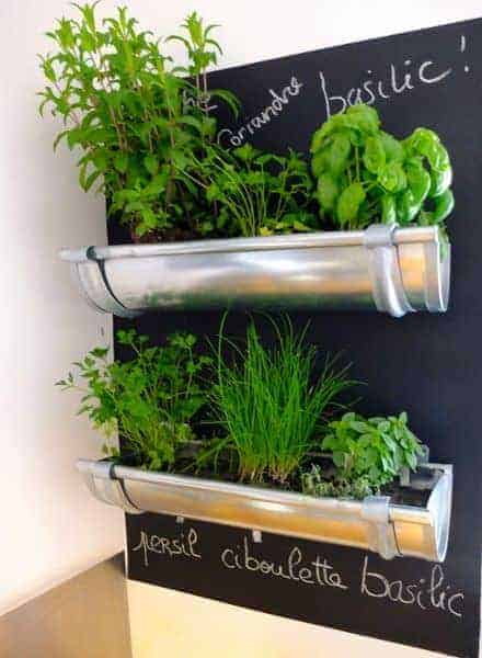 Gutters Repurposed for Herbs in the Kitchen Flowers, Plants & Planters