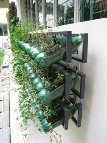 Vertical Garden from Soda Bottles - flowers-plants-planters