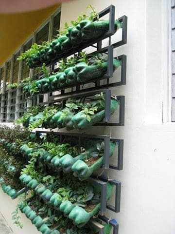 Vertical Garden from Soda Bottles Flowers, Plants & Planters