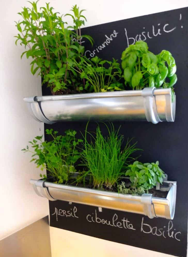 Great Indoor Herb Garden Idea 1 - Flowers & Plants - 1001 Gardens