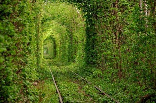 Tunnel-of-Love_5600_398