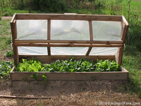 Diy Build an Amish Cold Frame - garden-pallet-projects-ideas, flowers-plants-planters