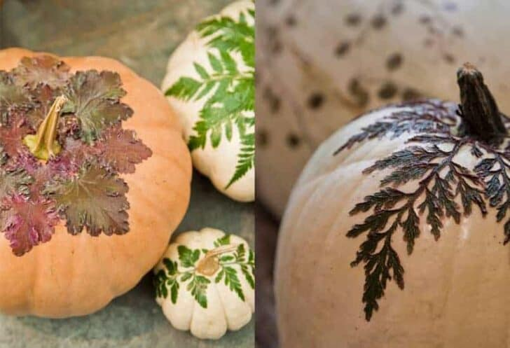 How to Make Botanical Pumpkins (Tutorial) - garden-decor
