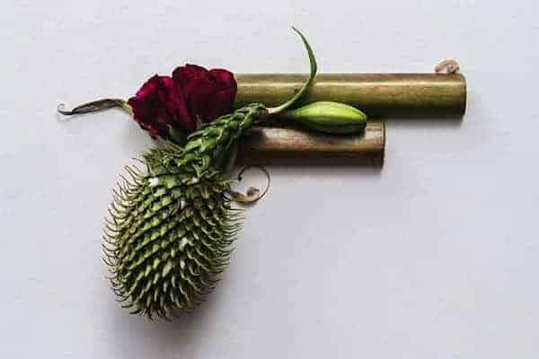 Harmless Organic Weapons - garden-decor