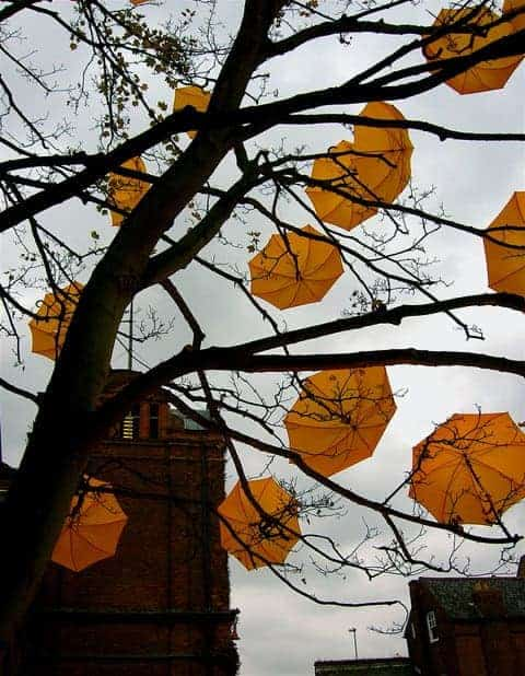 Umbrella's Tree by Sam Spencer Guerrilla & Urban Gardening