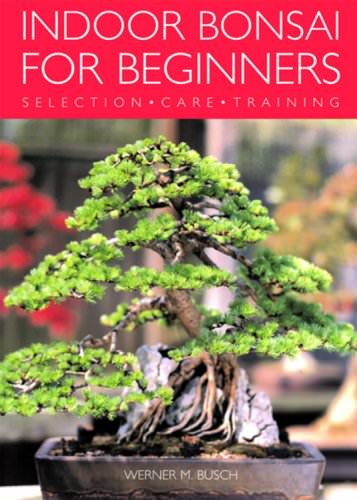 - Indoor-Bonsai-for-Beginners-Selection-Care-Training-0