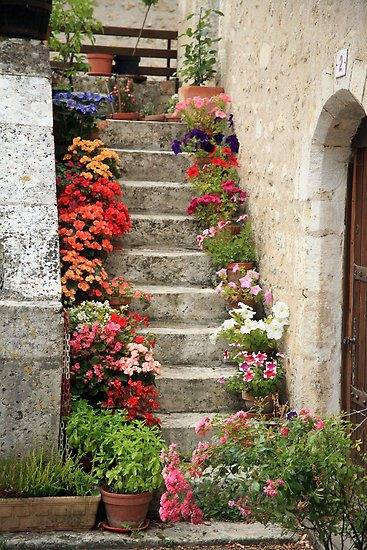 Steps Garden - garden-decor
