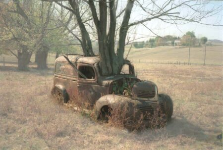 Tree Growing through an Old Dodge Truck 5 - Urban Gardens & Agriculture - 1001 Gardens