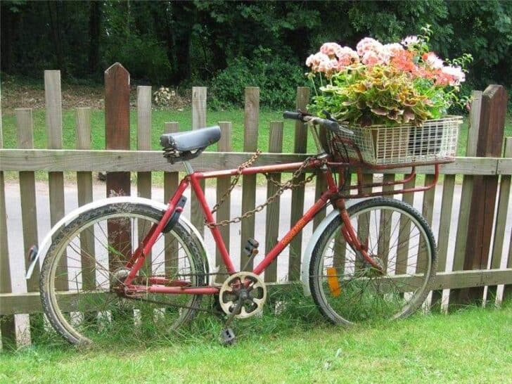 another-bike-in-garden