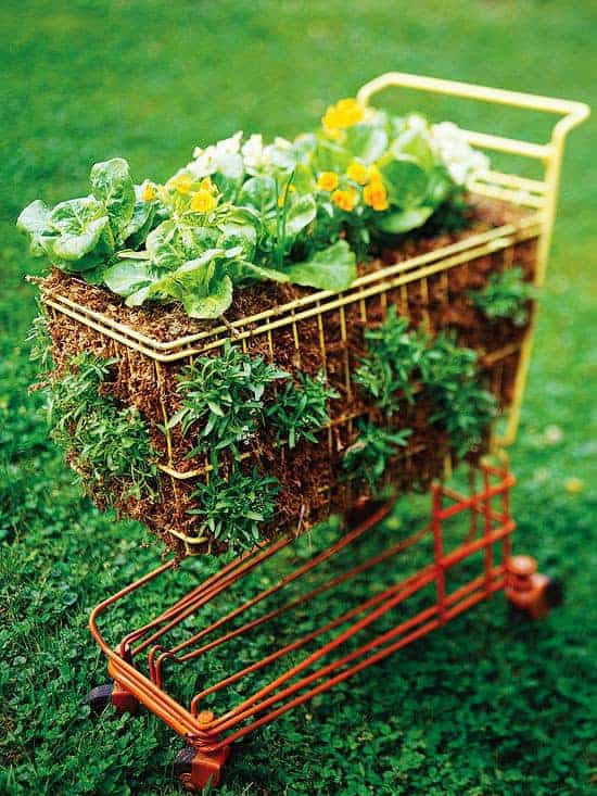 Cart as a Salad Garden - flowers-plants-planters