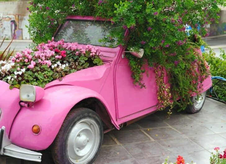 2cv Car Flowerpot - flowers-plants-planters