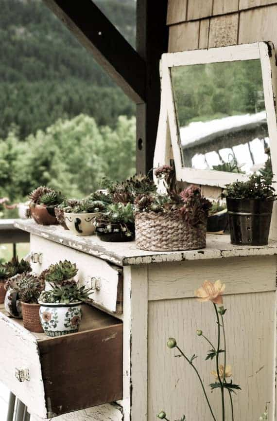 Diy: Recycled Garden Dresser 4 - Flowers & Plants