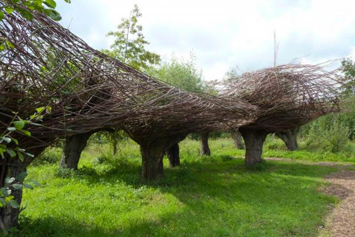 Will-Beckers-Natural-Willow-Sculptures-51