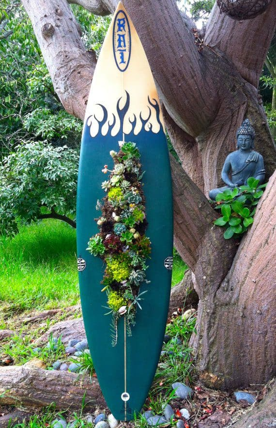 Surfboard as Succulent Planter 1 - Flowers & Plants - 1001 Gardens