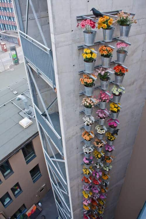 Urban Vertical Garden - flowers-plants-planters