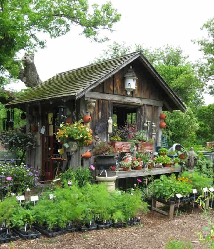 Old Garden Shed 12 - Sheds & Outdoor Storage