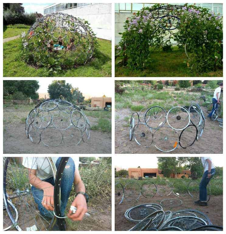 Bicycle Rim Vertical Gardening Dome - flowers-plants-planters