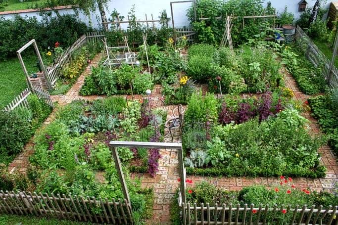 Captivating Nice Kitchen Garden In Austria   Flowers Plants Planters
